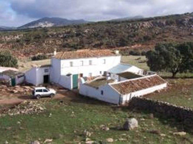 Farmhouse for sale in Ronda in Ronda