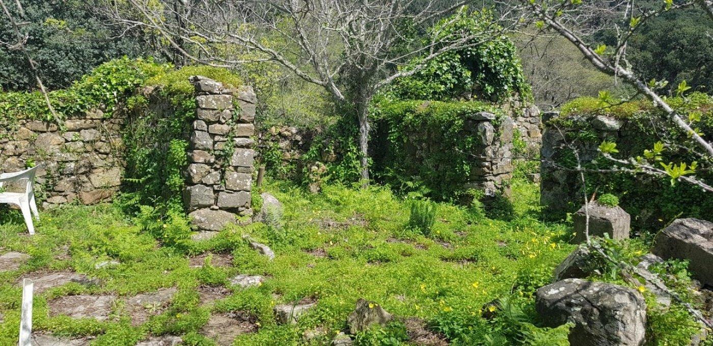 Rustic property in Tarifa in Tarifa